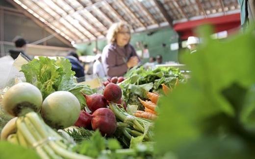 Fórum Internacional de Agricultura Orgânica e Sustentável nos Dias 4 e 5 de Junho