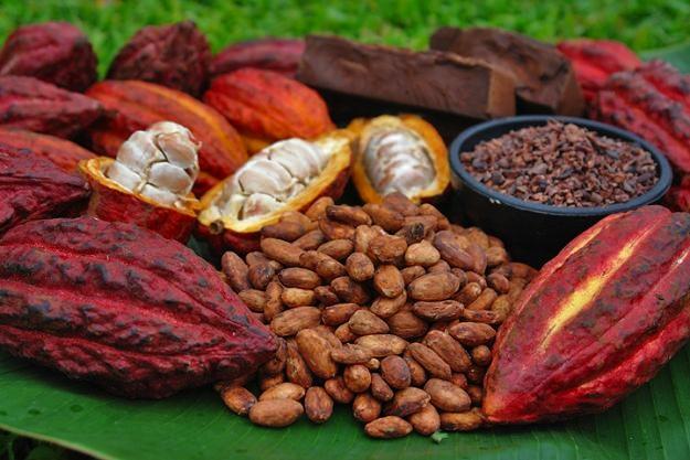 Confira uma reportagem completa sobre a história do chocolate e suas curiosidades.