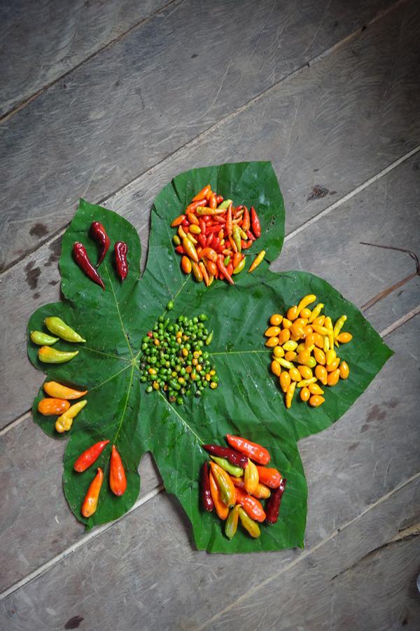 pimenta-baniwa-design-da-mata-senhora-mesa