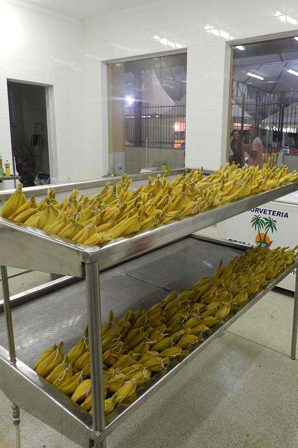 41ª Festa do Milho Verde de Tanquinho acontece até dia 22