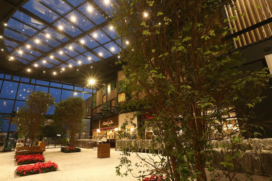 17.11.15 - Nova Alameda Parque D PedroTatiana Ferro Fotografia